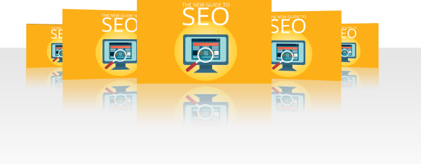 New SEO Guide MRR package